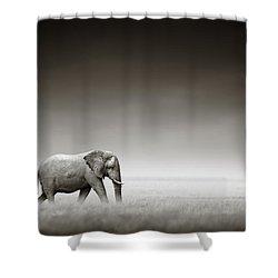Elephant With Zebra Shower Curtain by Johan Swanepoel