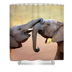Elephants Touching Each Other Shower Curtain by Johan Swanepoel