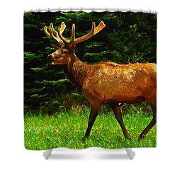 Elk Portrait Shower Curtain by Ayse Deniz