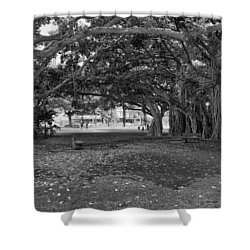 Embraced By Trees Shower Curtain by Douglas Barnard