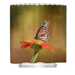Embracing Nature Shower Curtain by Kim Hojnacki