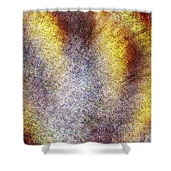 Emerging Shower Curtain by Christopher Gaston