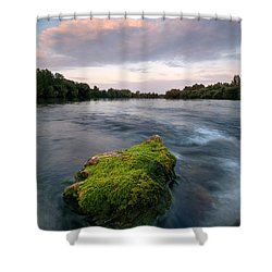 Emerging Shower Curtain by Davorin Mance