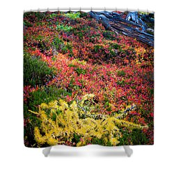 Enchanted Colors Shower Curtain by Inge Johnsson