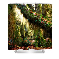 Enchanted Forest Shower Curtain by Inge Johnsson