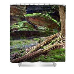 Enchanting Shower Curtain by J Allen