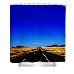 Endless Roads In New Mexico Shower Curtain by Susanne Van Hulst