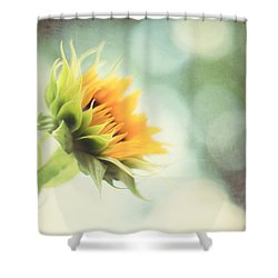 Eternal Optimist Shower Curtain by Amy Tyler