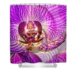 Ethereal Orchid By Sharon Cummings Shower Curtain by Sharon Cummings