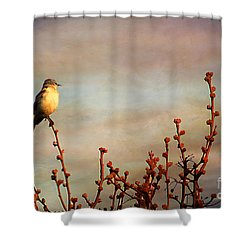 Evening Mocking Bird Shower Curtain by Darren Fisher