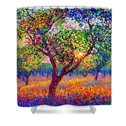 Evening Poppies Shower Curtain by Jane Small
