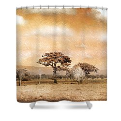 Evening Showers Shower Curtain by Holly Kempe