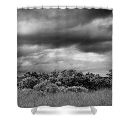 Everglades Storm Bw Shower Curtain by Rudy Umans