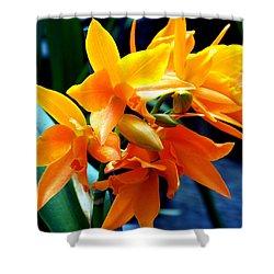 Exotic Orange Shower Curtain by Karen Wiles