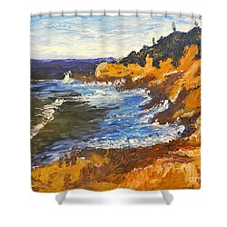 Exploring On The Rocks  Shower Curtain by Pamela  Meredith