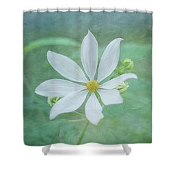 Expressions Shower Curtain by Kim Hojnacki