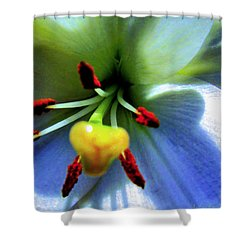 Extrem Lily Heart Shower Curtain by Danielle  Parent