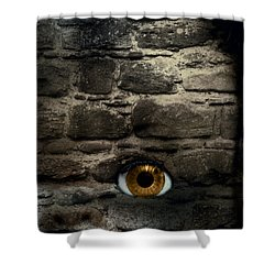 Eye In Brick Wall Shower Curtain by Amanda And Christopher Elwell