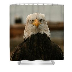 Face Off Shower Curtain by Crystal Magee