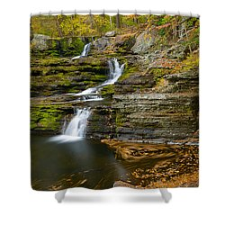 Factory Falls Shower Curtain by Mark Robert Rogers