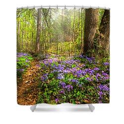 Fairies Forest Shower Curtain by Debra and Dave Vanderlaan