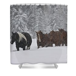 Faith Will Bring You Home Shower Curtain by Diane Bohna