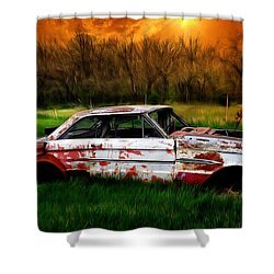 Falcon Shower Curtain by Liane Wright
