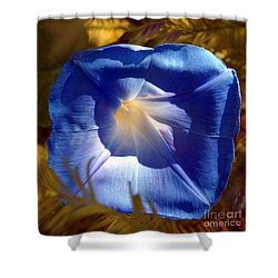 Fall Blues Shower Curtain by Kim Pate