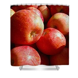 Fall Harvest Shower Curtain by Cheryl Young