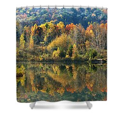 Fall Kaleidoscope Shower Curtain by Christina Rollo