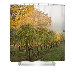 Fall Vineyard Colors Shower Curtain by Jean Noren