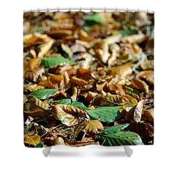 Fallen Leaves Shower Curtain by Carlos Caetano