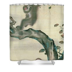 Family Of Monkeys In A Tree Shower Curtain by Japanese School