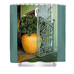 Fancy Gate And Plain Pot Shower Curtain by Ben and Raisa Gertsberg