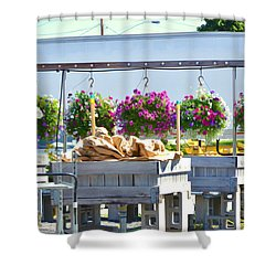 Farmers Market 3 Shower Curtain by Lanjee Chee