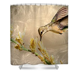 Feathers Shower Curtain by Donna Kennedy