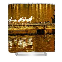 Feed Us Shower Curtain by Marvin Spates
