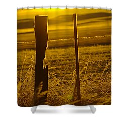 Fence Post In The Morning Light Shower Curtain by Jeff Swan