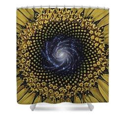 Fibonaccis Mandela V.2 Shower Curtain by Simon Kregar