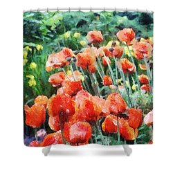 Field Of Flowers Shower Curtain by Jeff Kolker