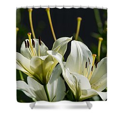 Finishing Blossoming - Featured 3 Shower Curtain by Alexander Senin