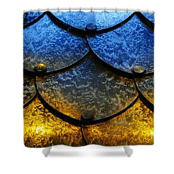 Fire And Ice Shower Curtain by Skip Hunt