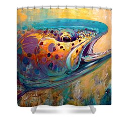 Fire From Water - Rainbow Trout Contemporary Art Shower Curtain by Savlen Art