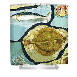 Fish Shower Curtain by English School