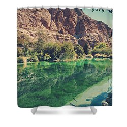 Fish Gotta Swim Shower Curtain by Laurie Search