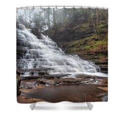 Fl Ricketts Waterfall Shower Curtain by Lori Deiter