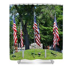 Flag - Illinois Veterans Home - Luther Fine Art Shower Curtain by Luther  Fine Art