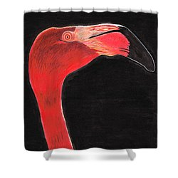 Flamingo Art By Sharon Cummings Shower Curtain by Sharon Cummings