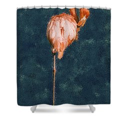 Flamingo - Happened At The Zoo Shower Curtain by Jack Zulli