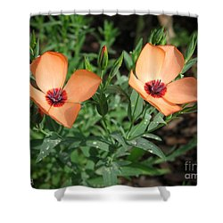 Flax Named Charmer Salmon Shower Curtain by J McCombie